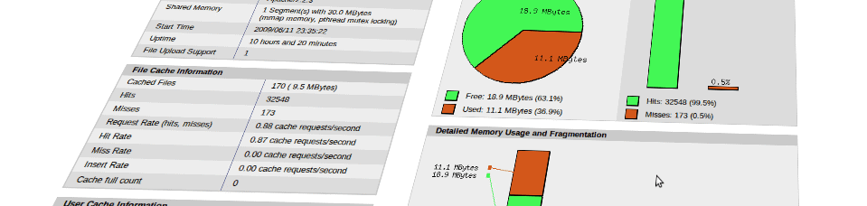 APC and Memcache with Magento